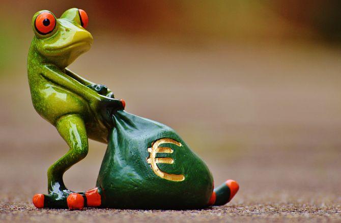 Лягушка несет деньги