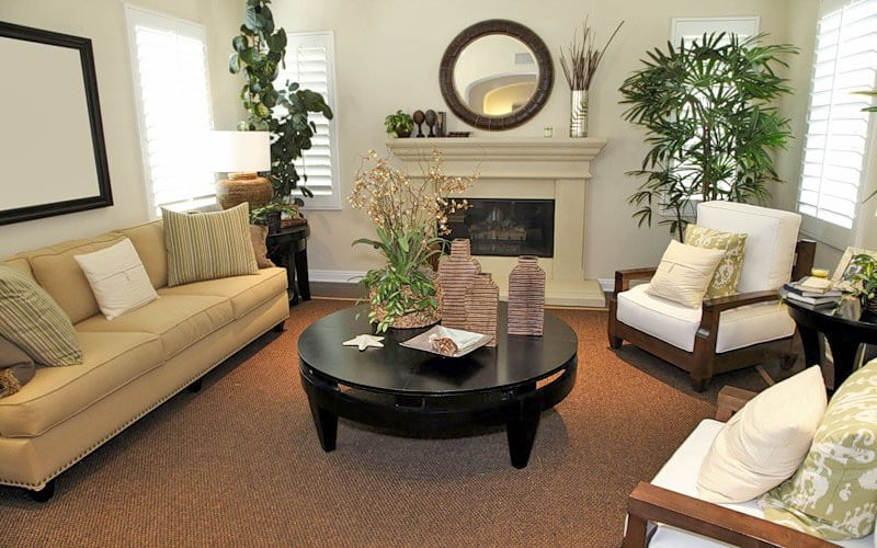 Размещаем растения в гостиной