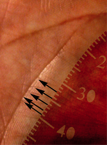 Обнаружение символа в середине линии