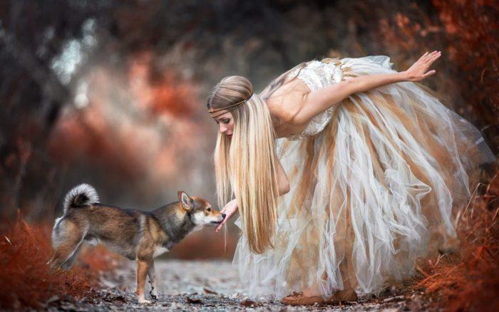 Женские тотемы: собака