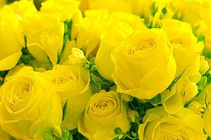 Желтые розы также являются не самым распространенным цветком.