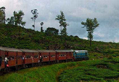 пассажирский поезд на природе