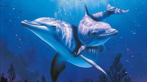 Как расшифровать сон про дельфинов