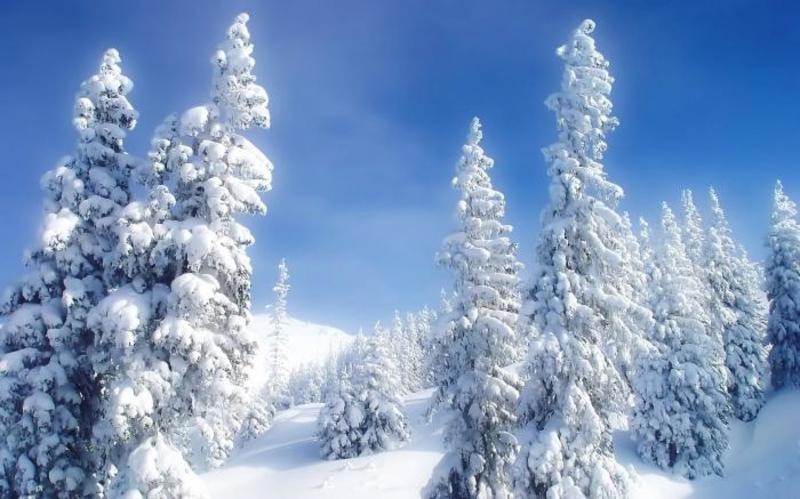 К чему снится лето зимой по различным сонникам
