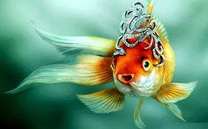 Толкование сна про золотую рыбку