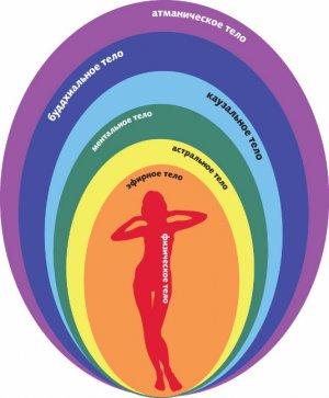 Тонкие тела и тело человека