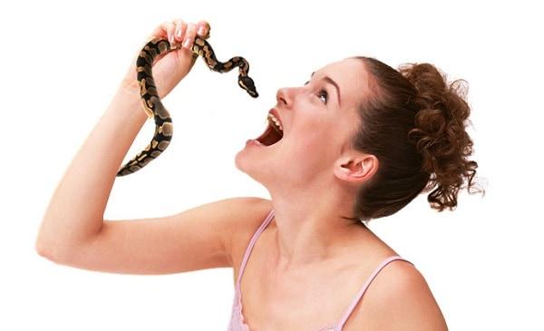 Проглочу змею